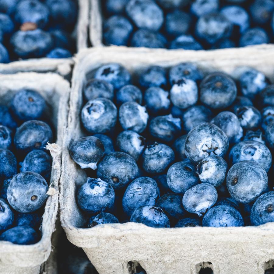 Bring in the Berries