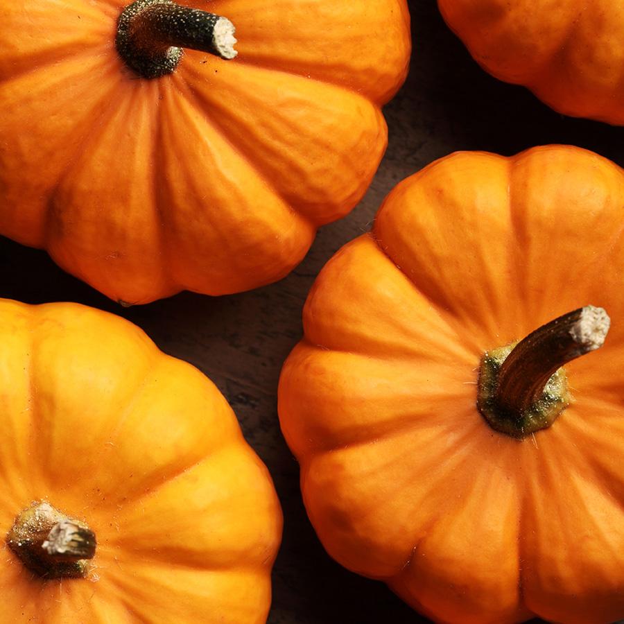 top of pumpkins