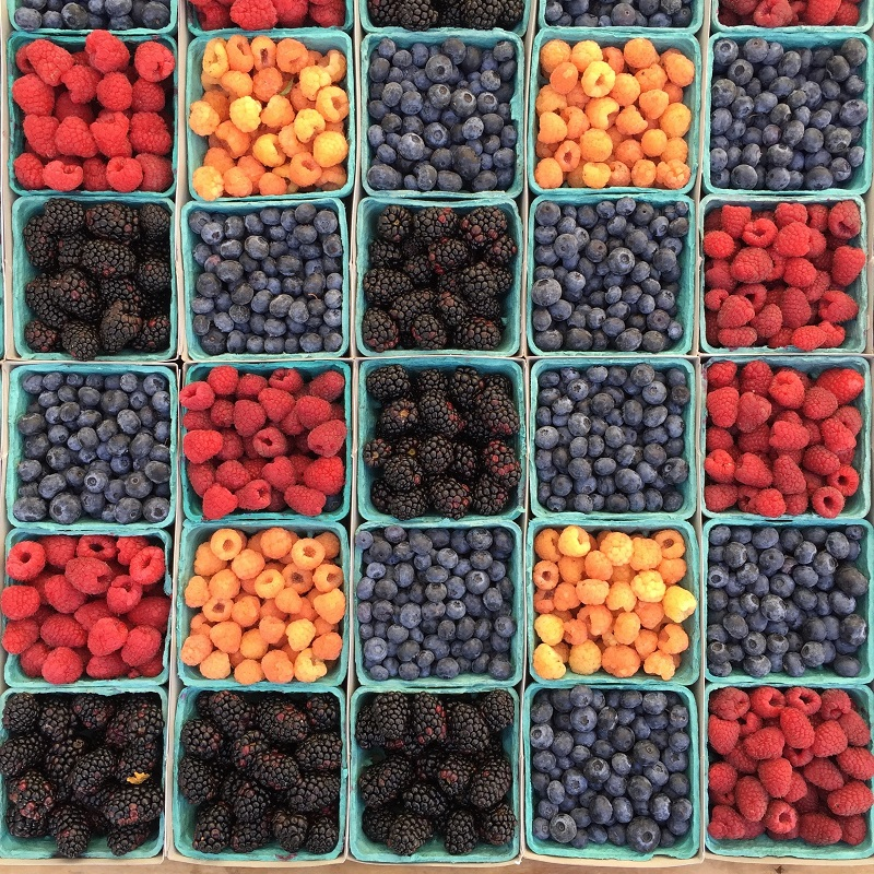 March into Better Nutrition with Berries